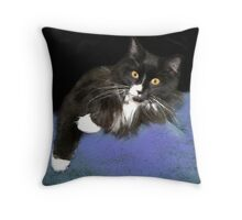 Mittens  Throw Pillow