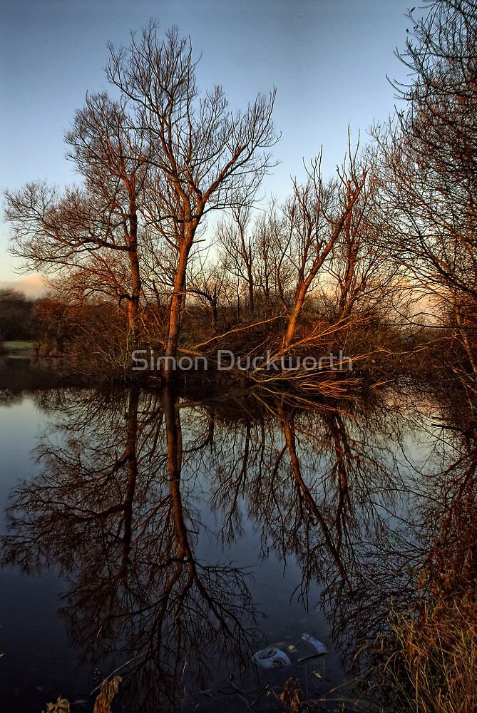 Outney Common by Simon Duckworth