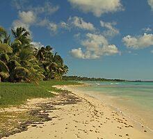 Bounty Island by Robert Abraham