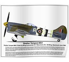 Hawker Tempest MKV Aircraft Profile Poster