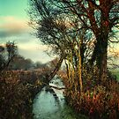Meander Slowly by Simon Duckworth
