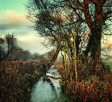 Meander Slowly by Simon Duckworth