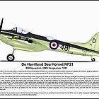 De Havilland Sea Hornet NF21 Aircraft Profile by coldwarwarrior