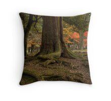 Nara Koen Throw Pillow