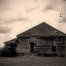 This Really Old House by Susan Zohn