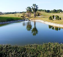 Reflections on the golf course by LadyE