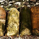 Old Grave Stones by john0