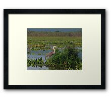 Precious Moments with Heron Framed Print