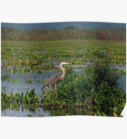 Precious Moments with Heron Poster