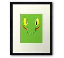Pokemon - Treecko / Kimori Framed Print