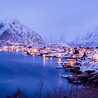 Reine in Royal Blue by Kristin Repsher