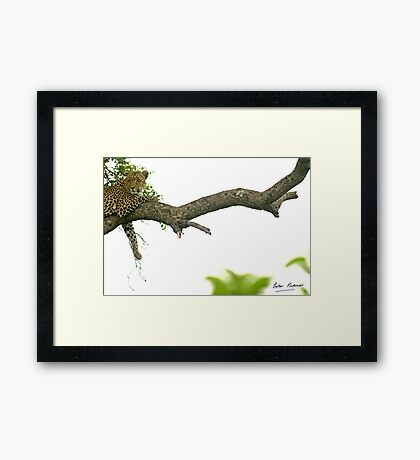 space and contrast - Karula Framed Print