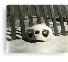 Turtle skull on beach Canvas Print