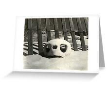 Turtle skull on beach Greeting Card