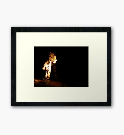 in the night light - Karula Framed Print