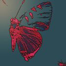 Butterfly Different by gina1881996
