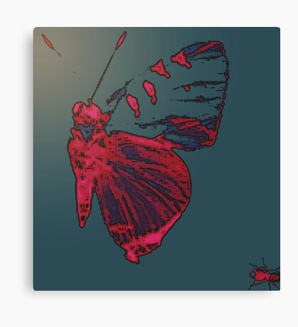 Butterfly Different Canvas Print