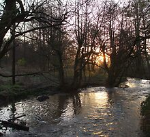 Sunrise on the Stream by Christian Byrne Cook