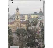 a sprawling Chile landscape iPad Case/Skin