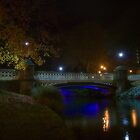Bridges in Christchurch by davemorris05