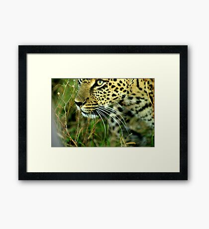 proximity and space - Karula Framed Print