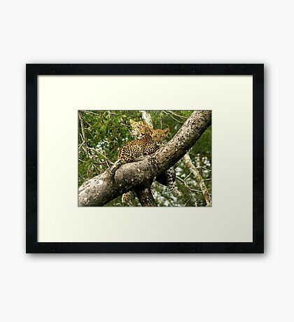 emotion and care - Karula Framed Print