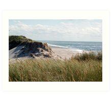 dune on the north sea Art Print