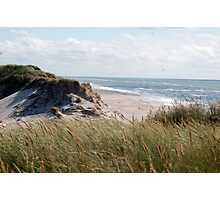 dune on the north sea Photographic Print