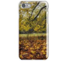 Under The Autumn Trees iPhone Case/Skin