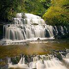 Purakaunui falls by davemorris05