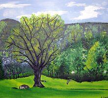 Serenity Valley by Kathryn Shepard by CoastalCarolina