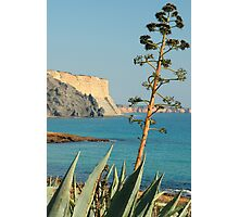 Praia da Luz Photographic Print