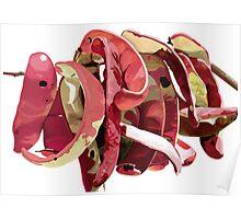 Garrofes Vermelles Poster
