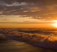 90 Mile Beach - Vic Australia by Patricia Gibson