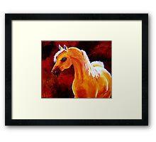 Horse in the Light Framed Print