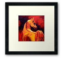 Arab Horse in Profile Framed Print