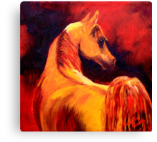 Arab Horse in Profile Canvas Print