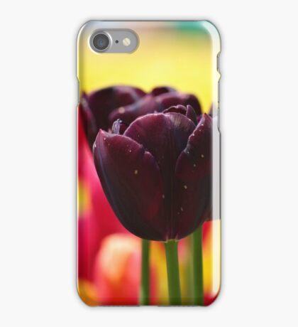 Tulips! iPhone Case/Skin