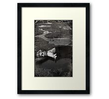 Come Down and Waste Away With Me Framed Print