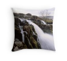 Loup o'Fintry, large format Throw Pillow