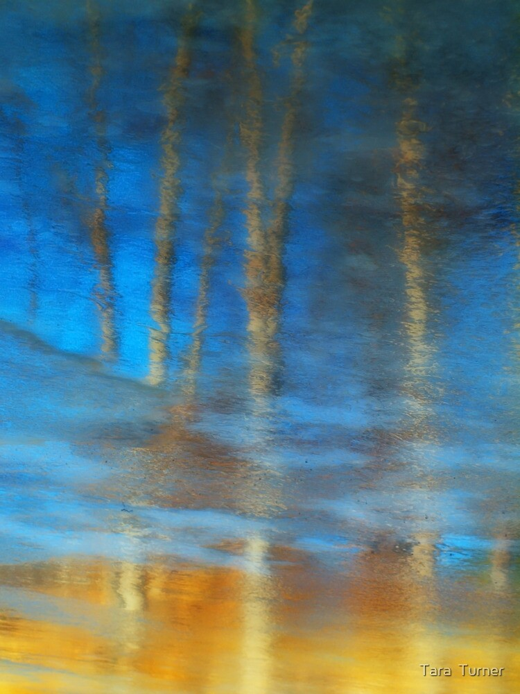 Ice Reflections by Tara  Turner