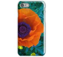 poppy on a sunny day iPhone Case/Skin