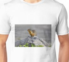 King of the mountain Unisex T-Shirt