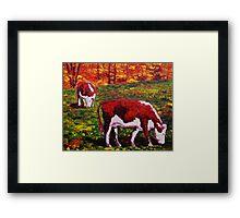 New England Autumn Cows Framed Print