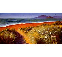 Oregon Path on the Pacific Photographic Print