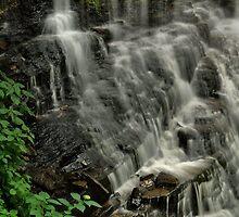 Above Ganoga Falls   by Stephen Vecchiotti