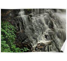 Above Ganoga Falls   Poster