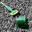Broken Brush - NSW by CasPhotography