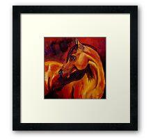 Light on the Horse Framed Print
