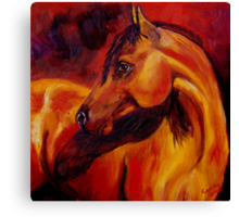 Light on the Horse Canvas Print